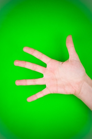 Outstretched human hand, showing palm and all fingers of left hand Stock Photo - 9570915