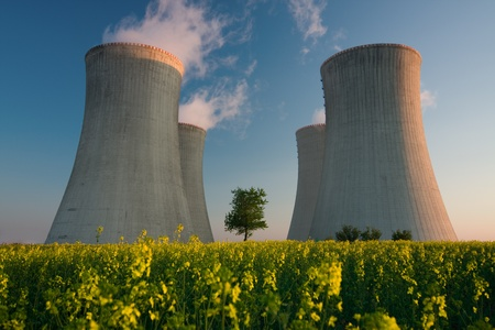 Cooling towers of a nuclear power plant with steam escaping toward the sky.  Flowering landscape in the foreground, and a single tree growing between the two sets of towers.
