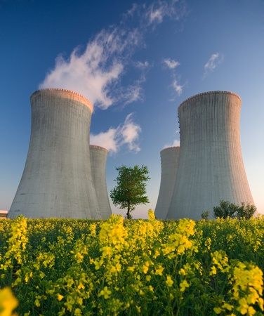 Cooling towers of a nuclear power plant with steam escaping toward the sky.  Flowering landscape in the foreground, and a single tree growing between the two sets of towers. photo