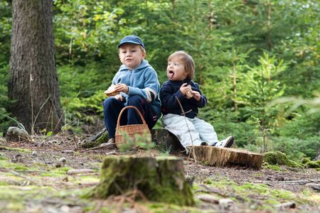kiddies: Young brother and sister eating picnic sandwiches in countryside, forest in background. Stock Photo