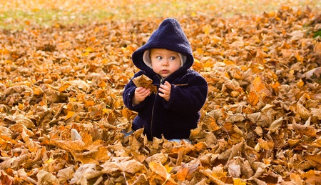 Cute baby girl with lower body covered by autumnal leaves. photo