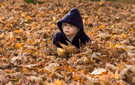 Cute baby girl with lower body covered by autumnal leaves.