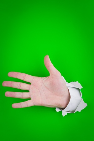Outstretched human hand, showing palm and all fingers of left hand Stock Photo - 9711965