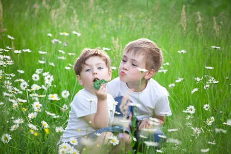 Two young preschool siblings playing in green field with blooming daisies. Stock Photo - 10069851