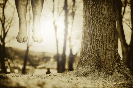 Lower legs and feet hanging down next to a tree trunk with selective focus. Stock Photo - 15331364