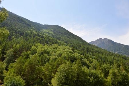 dombai: Caucasus Mountains beautiful nature and blue sky