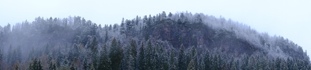 nuke: Forest in the fog on a rock background, mountain Stock Photo