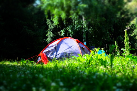 Tent in the forest camping, campsite, red nature