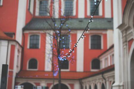 Garlands in the street trees new, night, year, illuminated