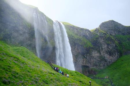 Panorama of the waterfall Seljalandsfoss nature, waterfal