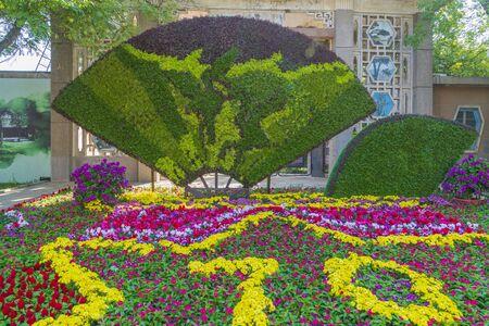 Flowerbed fan plant decoration