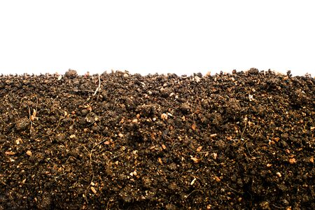 Section and Side view or top view of loamy soil for planting trees