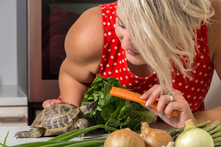 Woman feeding turtle with roman salad and carrot