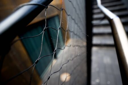 Spider web on metallic handle