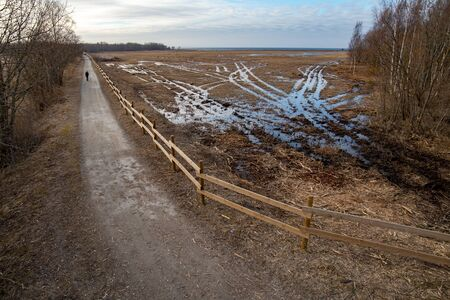 Wetlands with old road