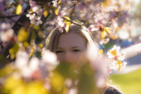 Woman looking through cherry branches