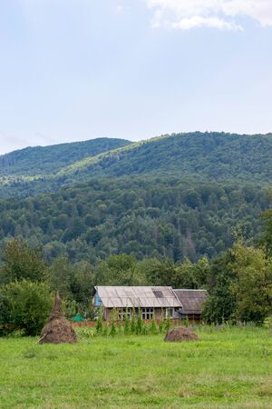 Farmhouse at the green forest edge. Haystacks and green pasture.