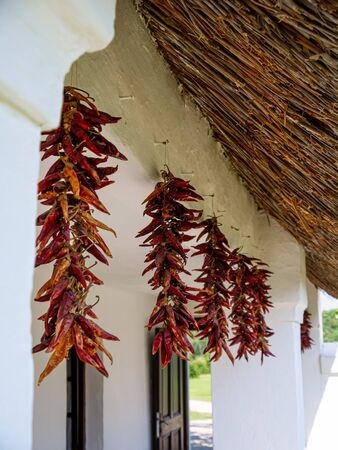 View on dried red paprika on a traditional hungarian pise house in Szentendre, Hungary on a sunny day. Stock Photo