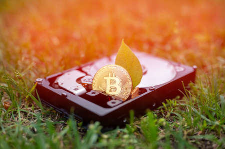 View on a hard disk drive with a bitcoin and a chia leaf representing cryptocurrencies on the grass on a sunny day.