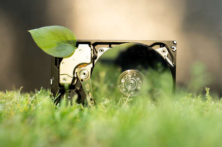 View on a hard disk drive with a chia leaf representing cryptocurrencies on the grass on a sunny day.