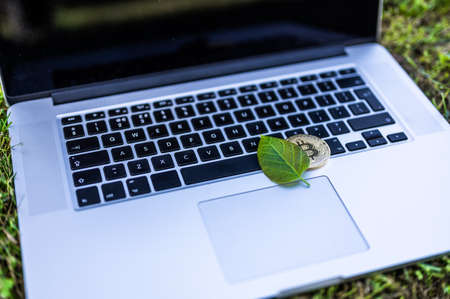 View on a laptop with a bitcoin and a chia leaf representing cryptocurrencies on the grass on a sunny day. Banque d'images
