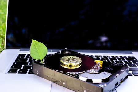 View on a laptop and a hard disk drive with a bitcoin and a chia leaf representing cryptocurrencies on the grass on a sunny day. Banque d'images