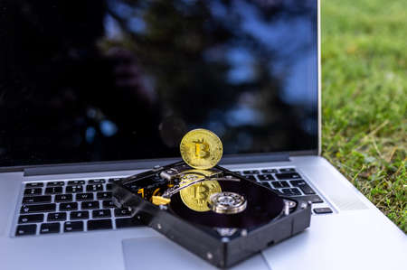 View on a laptop and a hard disk drive with a bitcoin representing cryptocurrencies on the grass on a sunny day. Banque d'images