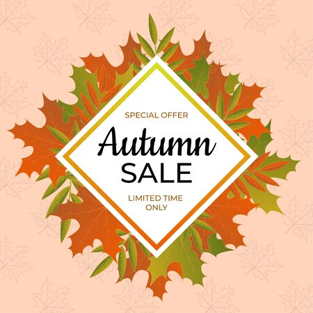 Autumn sale banner. Special offer limited time only. Vec