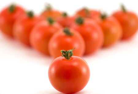 Tomato group isolated