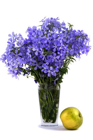 Bouquet of blue flower about an flavovirent apple isolated on white background
