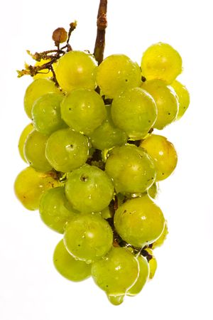 Wet green grapes isolated on white beckground Stock Photo