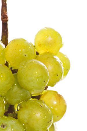 Wet green grape macro Stock Photo