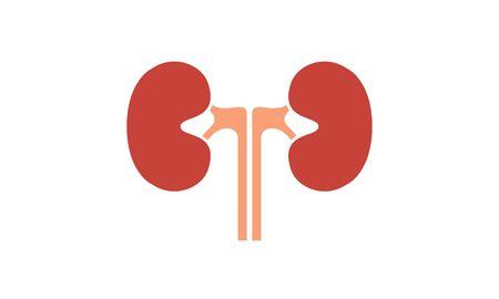 Kidneys human internal organ logo