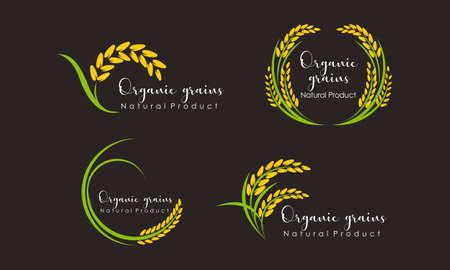 Set of Paddy wheat, rice organic grain products food banner logo Logo