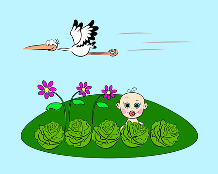 On the green glade the baby looks out from the cabbage, and above it the stork flies.