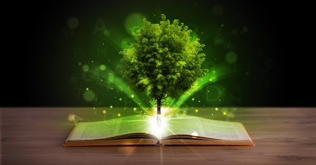 fantasy book: Open book with magical green tree and rays of light on wooden deck
