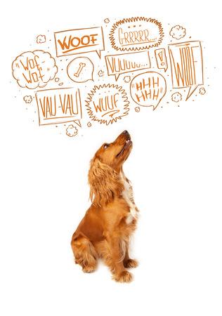 Cute cocker spaniel with barking speech bubbles above her head photo