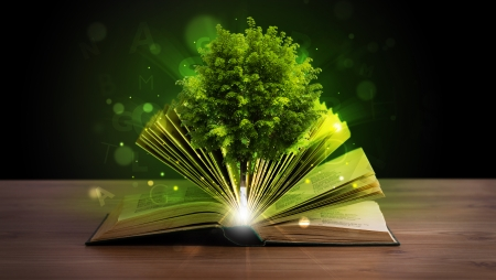 Open book with magical green tree and rays of light on wooden deck Imagens