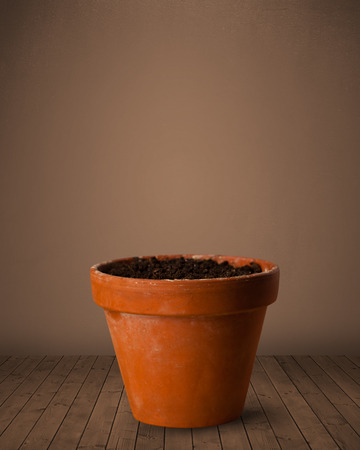 clay pot: Flowerpot with empty space Stock Photo