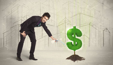 Business man poring water on dollar tree sign concept on city background photo