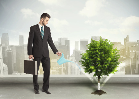 watering plants: Businessman watering green tree on city background concept