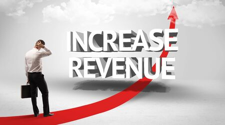 Rear view of a businessman standing in front of INCREASE REVENUE inscription, successful business concept