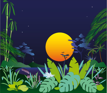 The late evening in tropics  Vector