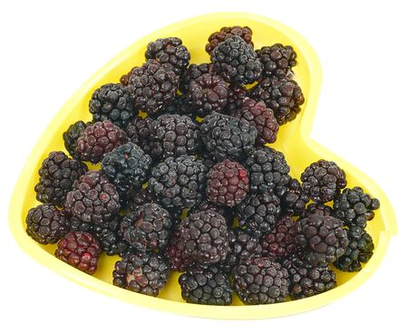 black mammoth: Frozen Blackberries in the bowl in the form of heart. White background.HDR photo