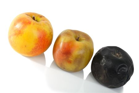 Apples with varying degrees of Rotting on a white background. photo