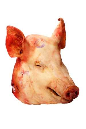 pork: Pigs head (product) isolated on a white background Stock Photo