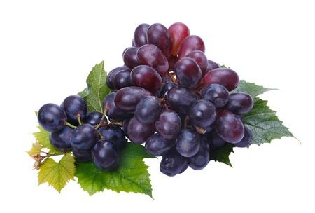 Un racimo de uvas oscuras sobre un fondo blanco Foto de archivo