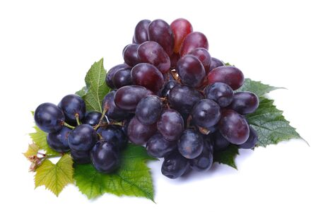 A bunch of dark grapes on a white background photo