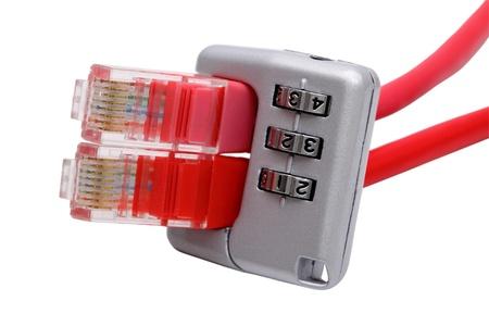 Protecci�n de red aislada sobre un fondo blanco.  Foto de archivo