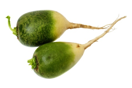 dikon: Daikon verde aislado en un fondo blanco Foto de archivo